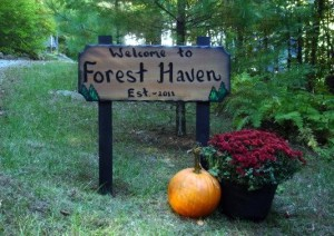Welcome-to-Forest-Haven-sign1-300x212